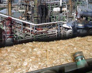 Chemical industry conveyor belts exporter in Delhi, India