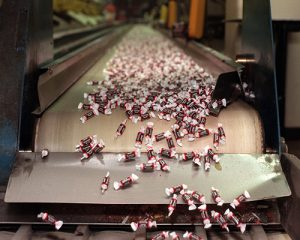 Confectionary conveyor belts supplier, exporter
