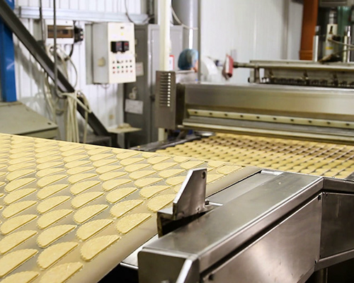 CONVEYOR BELTS FOR DOUGH PROCESSING