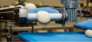 Food grade Conveyor belts manufacturer in India