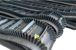 Sidewall Conveyor Belts supplier in Kanpur, India
